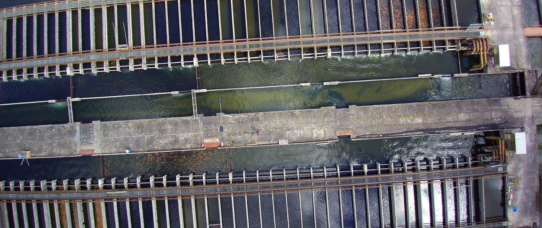 Aufzuchtbecken - Regenbogenforellen - Goldforellen - Aquakultur - Forellenhof Themar